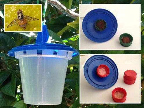 River Bioscience   Pest Monitoring Products   Capilure, Questlure & Sensus Trap