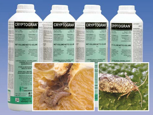 River Bioscience | Crop Protection Products | Cryptogran